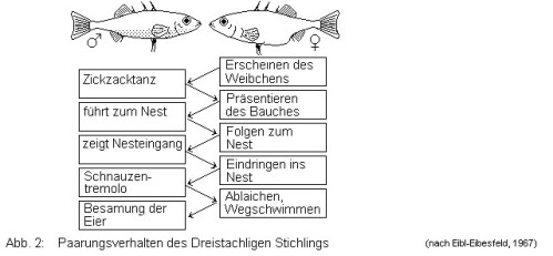 home aquaristik exoten reisen schule